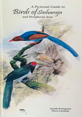 Birds of Sinharaja