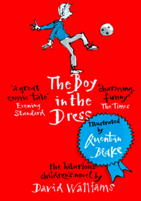 The Boy in the Dress - Paper Back